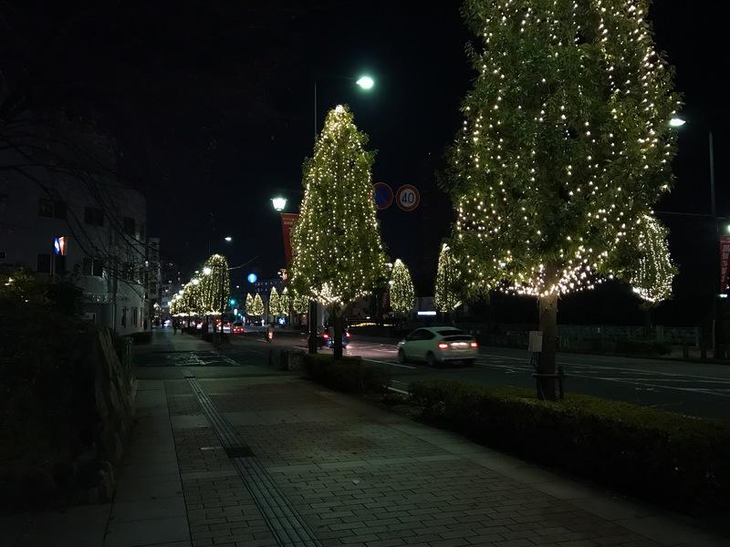 シンフォニーロード歩道の木は今年もライトアップ