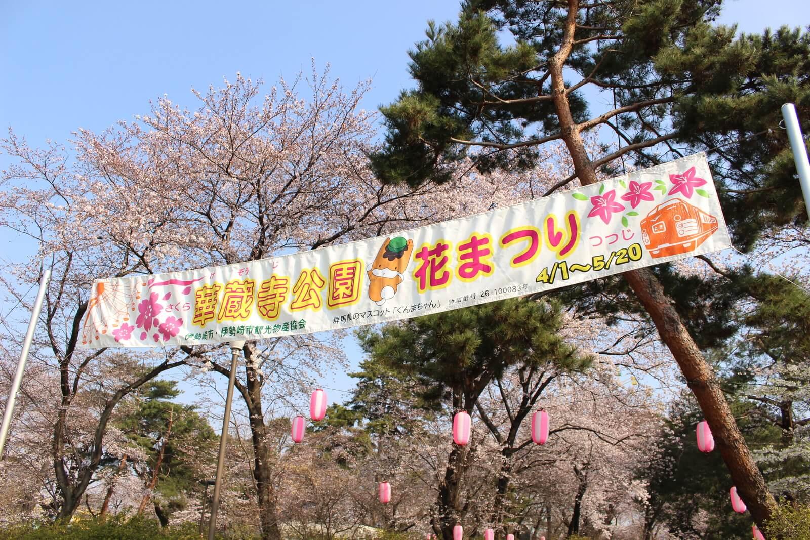 2017年4月1日から「華蔵寺公園花まつり」が始まり、桜もそろそろ満開に!