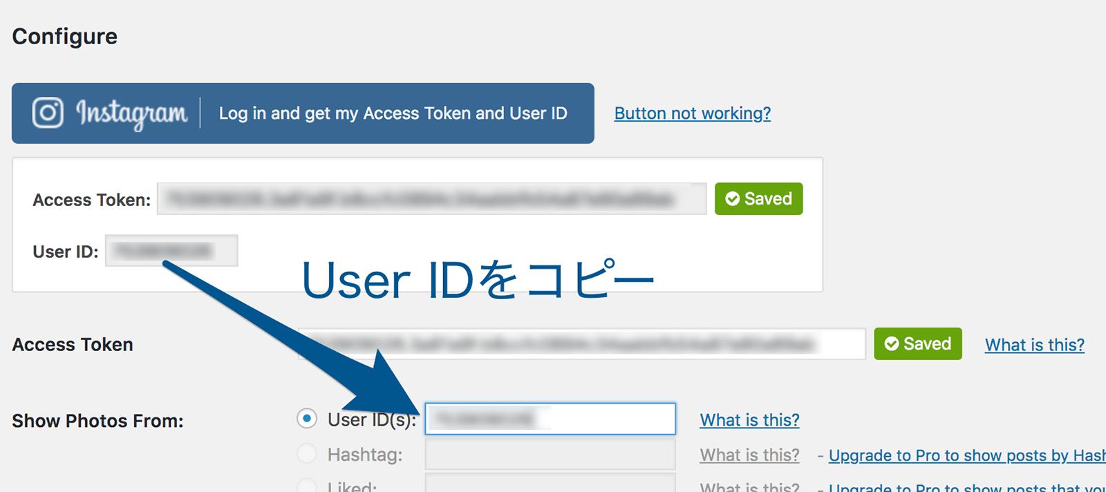 認証ができたらUser IDをコピーする