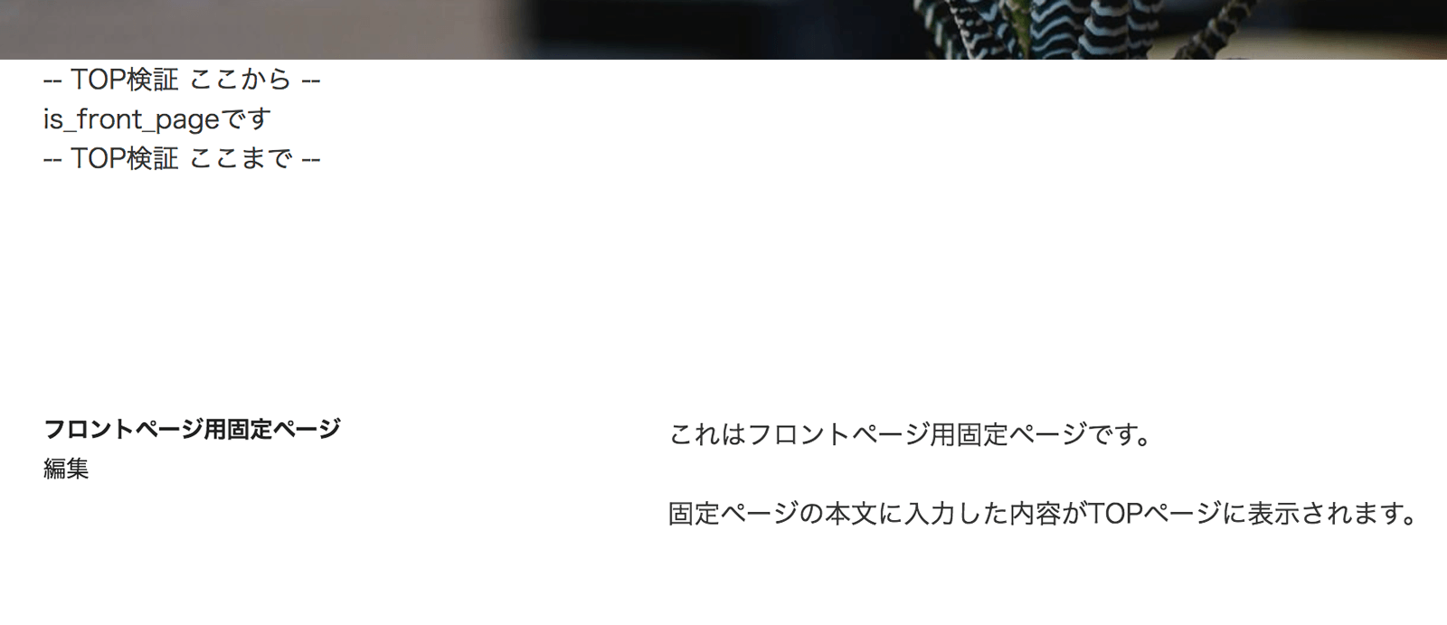 フロントページとして固定ページが選べれている場合はis_front_pageだけがtrueになります