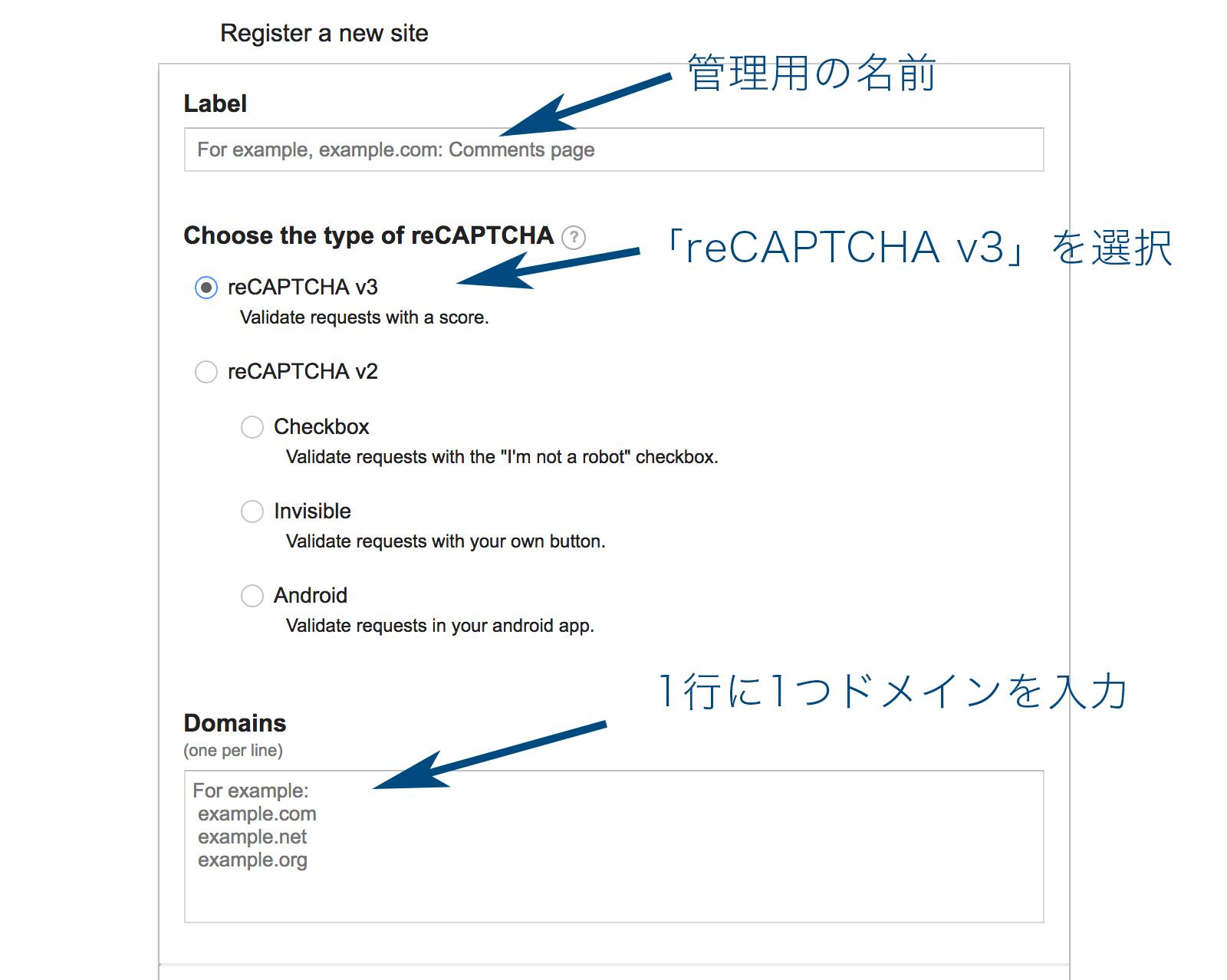 ;¥label、reCAPTCHAの種類、ドメインを入力する